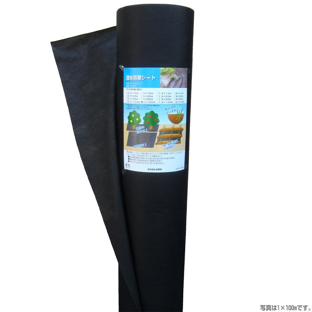 国華園 不織布タイプ 透水防草シート 幅1m×長さ100m 1巻1組 B00WM5RJAU