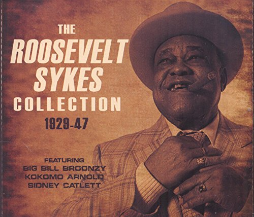 Expert choice for roosevelt sykes