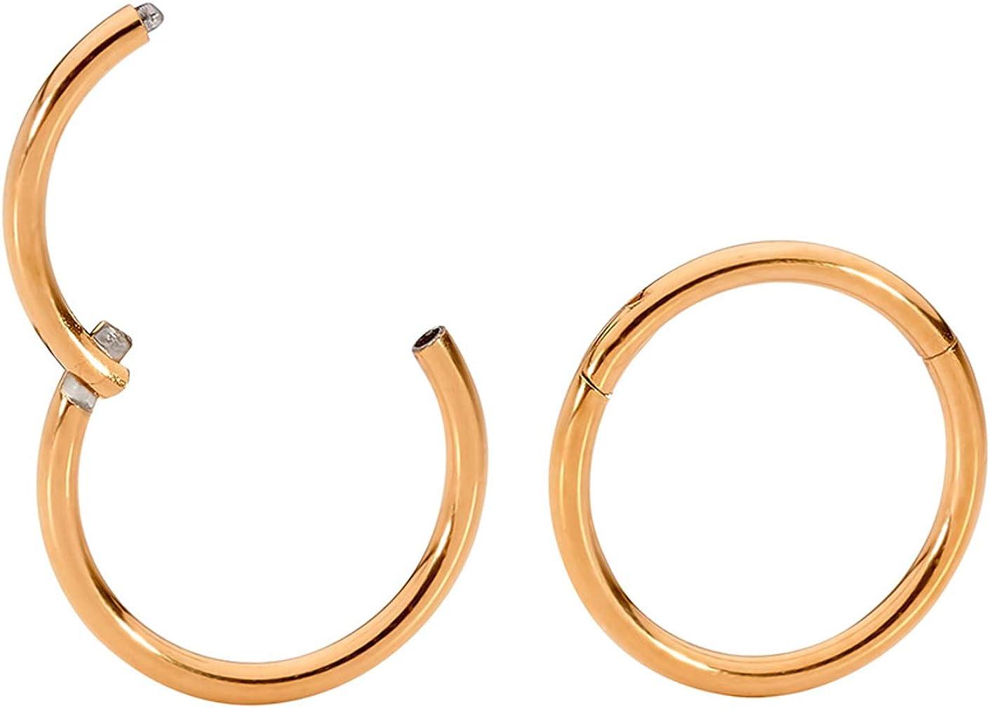 365 Sleepers 1 Pair Stainless Steel 20G (Very Thin) Hinged Segment Ring Hoop Sleeper Earrings Body Piercing 5mm / 6mm / 7mm / 8mm / 9mm / 10mm