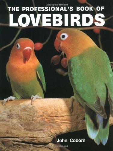 Birds John Cage - 4