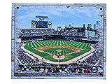 Artissimo Designs Plank Sports Stadium and Arenas Canvas Artwork (Minnesota Twins)