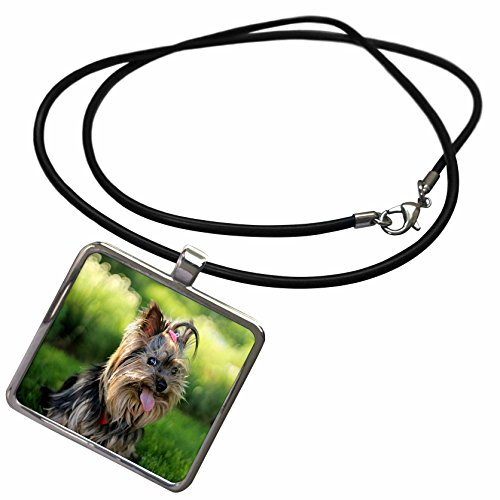 [3dRose Florene - Dog Art - Print of Yorkshire Terrier Portrait Painting - Necklace With Rectangle Pendant (ncl_203769_1)] (Yorkshire Terrier Jewelry)