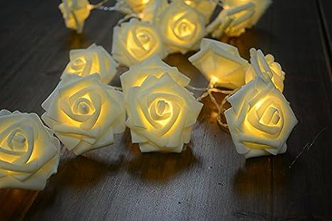 Led rose filo luci 20roses funzionamento a batteria 2m 2m 2modalità