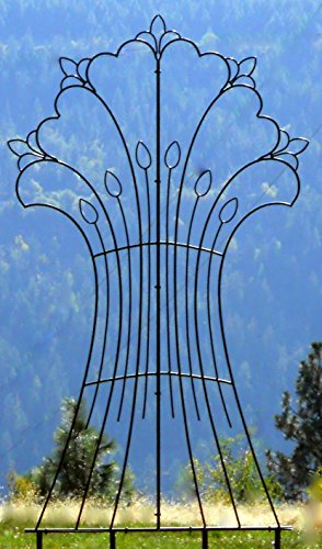 H Potter Garden Harvest Wrought Iron Trellis Weather Resistant Large by H Potter