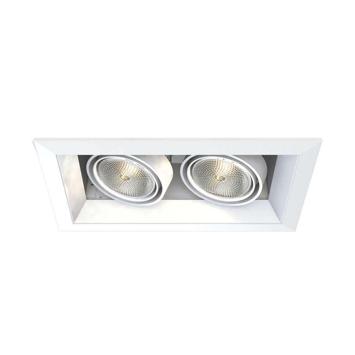 Eurofase TE162 2-Light PAR20 Multiple Recessed Light Fixture, White