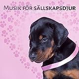 Musik för sällskapsdjur: Lugna ner din fyrbenta vänner, Husdjur avkoppling, Minska ångest, Ljudterapi för hundar och katter