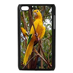 Funny Parrot,Cute Bird Protective Case 173 FOR IPod Touch 4th At ERZHOU Tech Store
