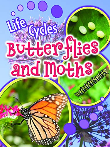 Butterflies and Moths (Life Cycles)