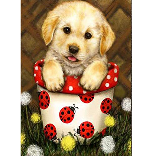 Aphila Diamond Painting Kits for Adults Round Drills Full Resin Rhinestones Embroidery Cross Stitch Decor Gift Puppy Ladybug 30x40cm/12