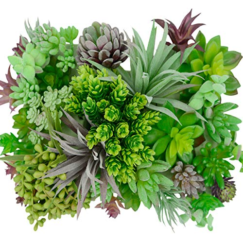 35 Gorgeous Artificial Succulent Plants Curated by Designers for Cohesive Colors, Most Realistic Fake Succulent Plants Available, Largest Set of Succulents