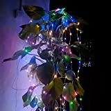 SOLLA 30 Leds Super Bright Rope Light, 9.8ft Copper Wire String Lights,Multicolor,1-Set