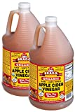 Bragg Organic Raw Apple Cider Vinegar vKccB, 2Pack (1 Gallon)