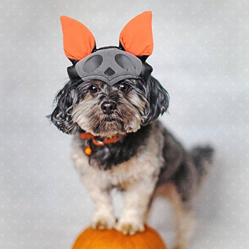 Cat Halloween Costumes Bat (PETLESO Dog Cat Halloween Costume Bat Pumpkin Hat for Cats for Small Dogs)