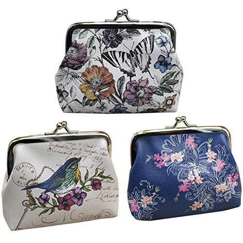 c Cute Exquisite Buckle Little Change Pouch Leather Small Cash Key Bag (Country, One Size) ()