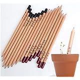Eco Lápices con semillas, 8lápices/cartón, regalo de cumpleaños