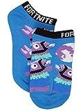 Fortnite Big Show Low Cut Socks, 5 Pair