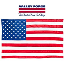 Valley Forge American Flag | 3'x5' Nylon Flag Made in America | US Flag