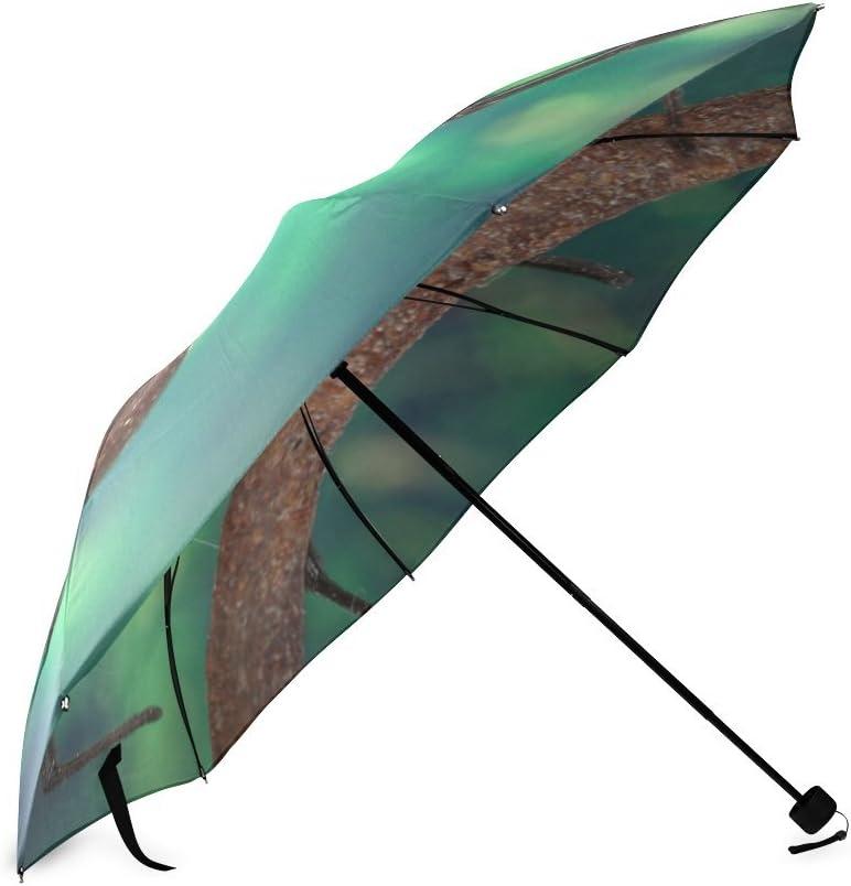 Custom Black Widow Spider Compact Travel Windproof Rainproof Foldable Umbrella