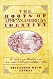 img - for The Roots of African-American Identity: Memory and History in Antebellum Free Communities by Elizabeth Rauh Bethel (1997-08-15) book / textbook / text book