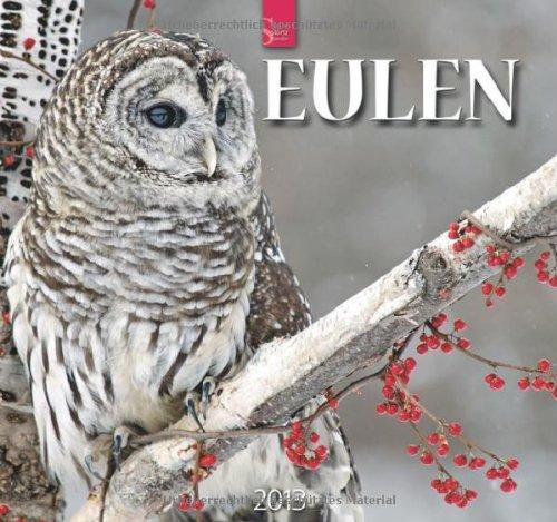Eulen 2013 - Original Stürtz-Kalender