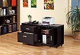 13728 File Cabinet Printer Stand Office Organizer