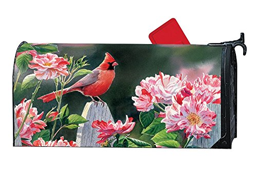 Studio M Mailwraps Cardinal with Variegated Roses Magnetic Mailbox Cover