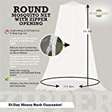 Mosquito Netting Canopy Screen   Hanging Mosquito Net for Bed, Hammocks, Travel & Patio   Insect Barrier, Malaria Net with Zipper   Included Travel Gift Bag by Posh Earth
