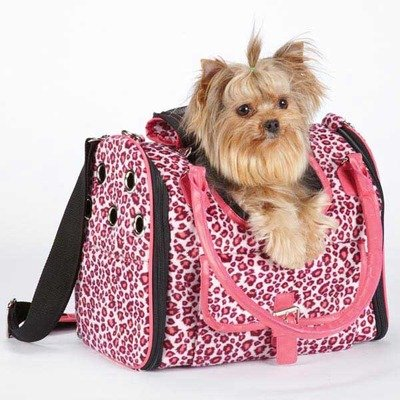 Vibrant Leopard Pet Carrier Color: Raspberry (Carrier Side Pet Collection East)