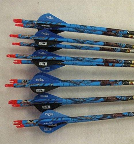 Easton ION 500 Blue Carbon Arrows w/Blazer Vanes Blaze Wraps 1 Dz.