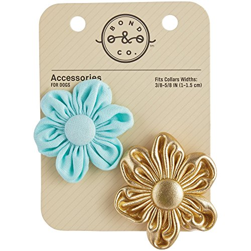 Bond & Co. Aqua & Gold Dog Collar Flowers, 2 PK