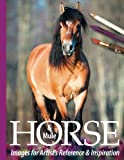 Horse and Mule Images for Artist's Reference and Inspiration (Horse Images for Artist's Reference and Inspiration) (Volume 3)