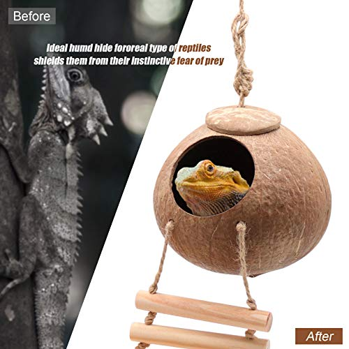 Gecko Coco Den with Ladder, 4.33 inches(Shell)2.36 inches(Opening Diameter), Reptile Hideouts Mini Condo for Lizards, Rough Texture Encourages Foot Beak Exercise, Ideal for Reptiles,Amphibians(Ladder)