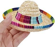 DAYOLY - Sombrero para Perros, Sombrero de Fiesta para ...