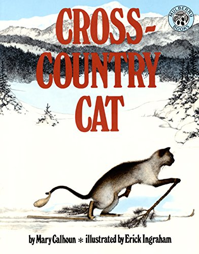 Cross-Country Cat (Air Jordan 7 Orion)