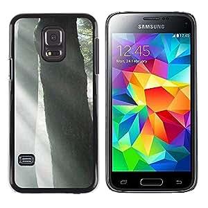 Smartphone Rígido Protección única Imagen Carcasa Funda Tapa Skin Case Para Samsung Galaxy S5 Mini, SM-G800, NOT S5 REGULAR! Plant Nature Forrest Flower 53 / STRONG