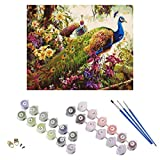 YCDC DIY Peacock Oil Painting By Numbers Frameless Canvas Coloring Wall Pictures