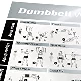 "DUMBBELL EXERCISE POSTER LAMINATED - Workout Strength Training Chart - Build Muscle, Tone & Tighten - Home Gym Weight Lifting Routine - Body Building Guide w/ Free Weights & Resistance - 20""x30"""