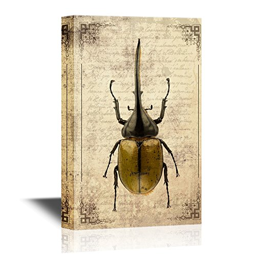 Insects Artwork Series Dynastes Hercules on Vintage Letter Paper