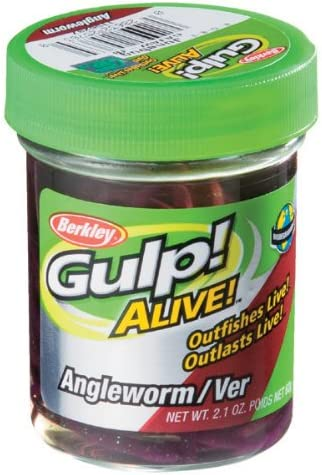 Alive Gulp NEW Angle Worm 1140586