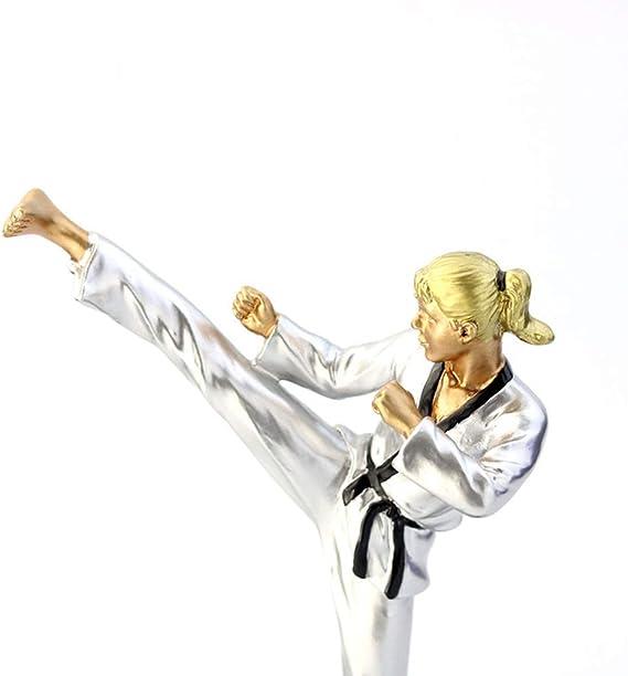 MEVIDA Figuras De Trofeos, Taekwondo Premia La Estatua De La Escultura Deportiva De Resina Ceremonia Apreciación Regalo Sport Premios Estatua-la Plata 11x8x18cm(4x3x7inch): Amazon.es: Hogar