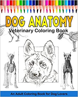 Amazon com: Dog Anatomy Veterinary Coloring Book: An Adult