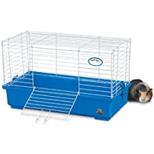 Kaytee My First Home Guinea Pig Habitat, Medium