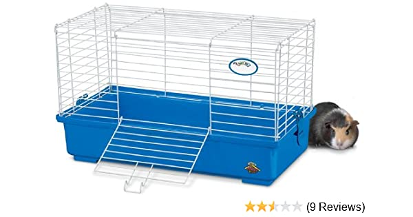 Brand new Amazon.com : Kaytee My First Home Guinea Pig Habitat, Medium : Pet  VY92