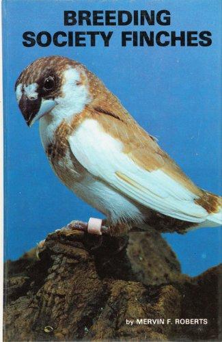 Breeding Society Finches