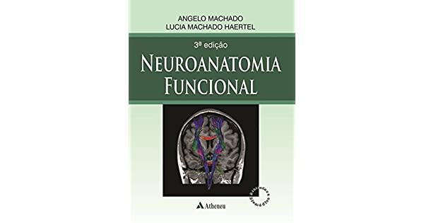 neuroanatomia funcional para