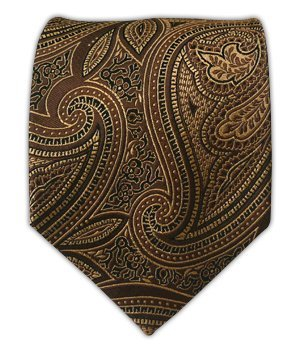The Tie Bar 100% Silk Woven Brown Paisley Tie