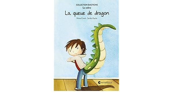 La queue de dragon: Mireia Canals Botines: 9788484128885: Amazon.com: Books