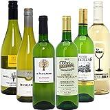 シニアソムリエ厳選 直輸入 白ワイン6本セット((W0AFF6SE))(750mlx6本ワインセット)