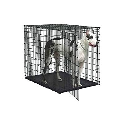 "Midwest Solution Series ""Ginormus"" Double Door Dog Crate by Midwest"