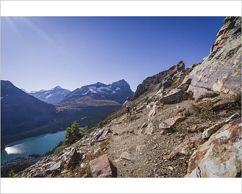 hiker on the Alpine Circuit Trail at Lake O Hara, Yoho National Park (14569438) (Yoho National Park Trails)